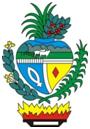 brasão Goiás